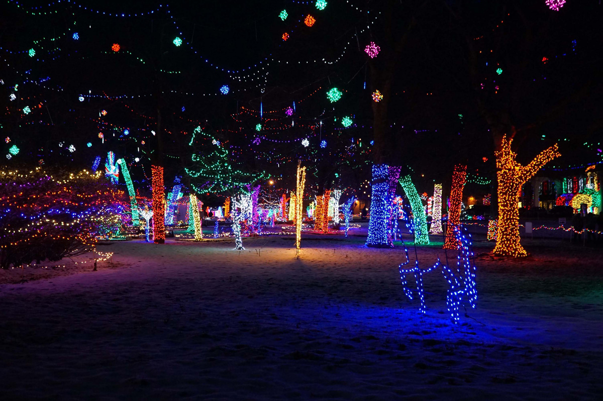 Rhema Park Christmas Lights