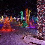 Beautiful Christmas Lights in Rhema Park