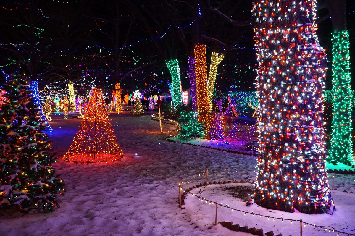 Beautiful Christmas Lights in Rhema Park