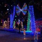 Fun Family at Rhema Christmas Lights