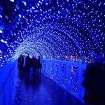 The Bridge at Rhema Christmas Lights