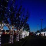 Festive and Fun at Rhema Christmas Lights Extravaganza